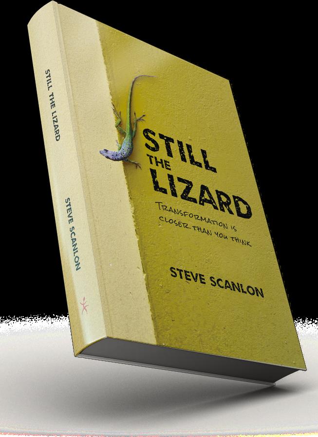lizard_book2.png